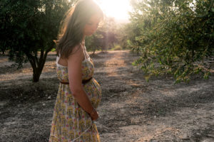 Pregnancy Chiropractic Services